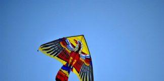 Cerf volant le jour de Kathari Devtera