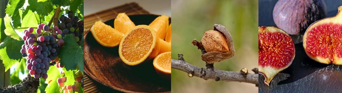 Exemples de fruits Grecs présents dans les variantes de pasteli