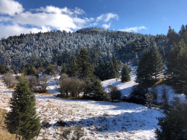 L'Arcadie sous la neige