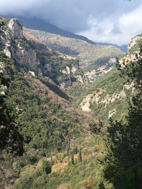 Les gorges du Lousios